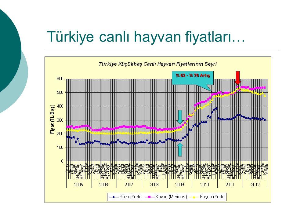 Türkiye canlı hayvan fiyatları… % 62 - % 76 Artış