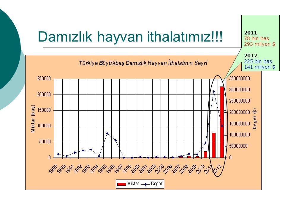 Damızlık hayvan ithalatımız!!! 2011 78 bin baş 293 milyon $ 2012 225 bin baş 141 milyon $