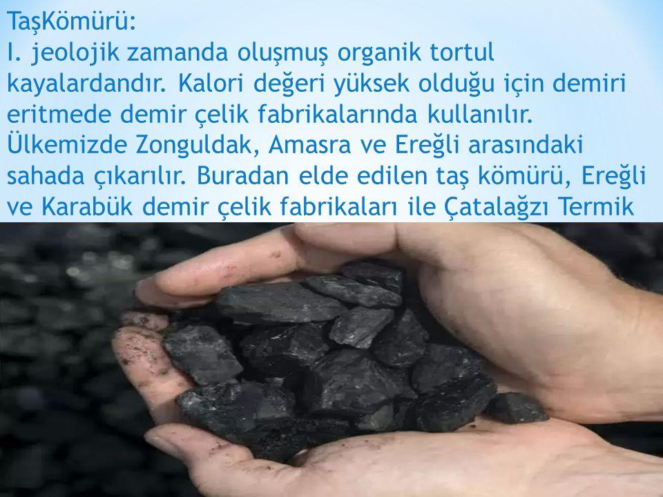 TaşKömürü: I. jeolojik zamanda oluşmuş organik tortul kayalardandır. Kalori değeri yüksek olduğu için demiri eritmede demir çelik fabrikalarında kulla