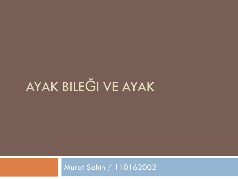 AYAK BILE Ğ I VE AYAK Murat Şahin / 110162002