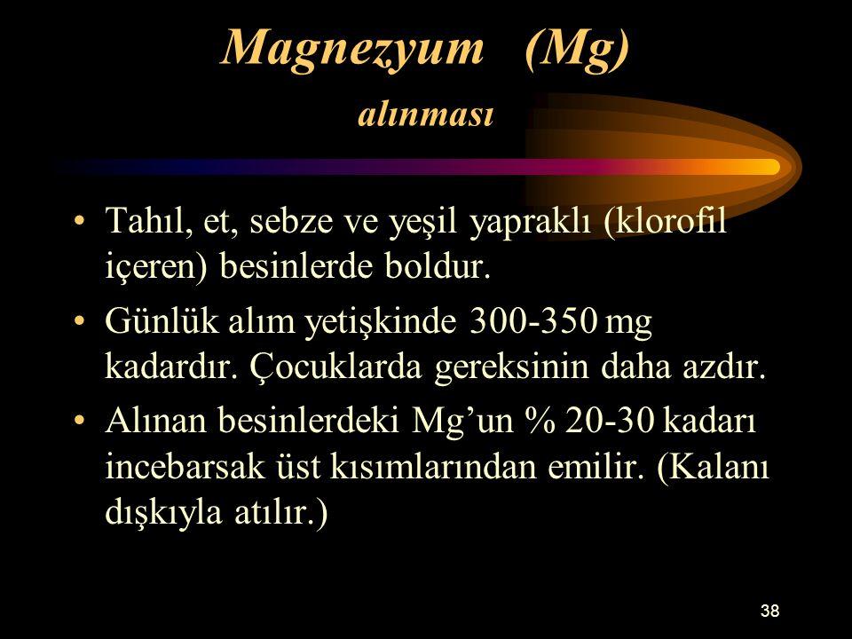 38 Magnezyum (Mg) alınması Tahıl, et, sebze ve yeşil yapraklı (klorofil içeren) besinlerde boldur. Günlük alım yetişkinde 300-350 mg kadardır. Çocukla