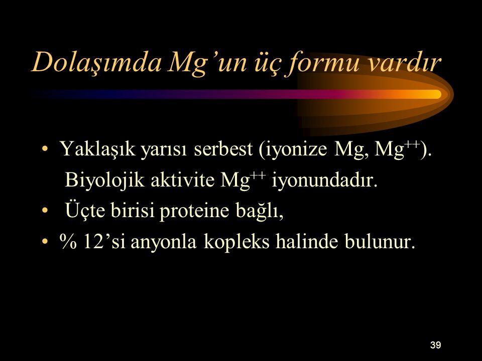 39 Dolaşımda Mg'un üç formu vardır Yaklaşık yarısı serbest (iyonize Mg, Mg ++ ). Biyolojik aktivite Mg ++ iyonundadır. Üçte birisi proteine bağlı, % 1