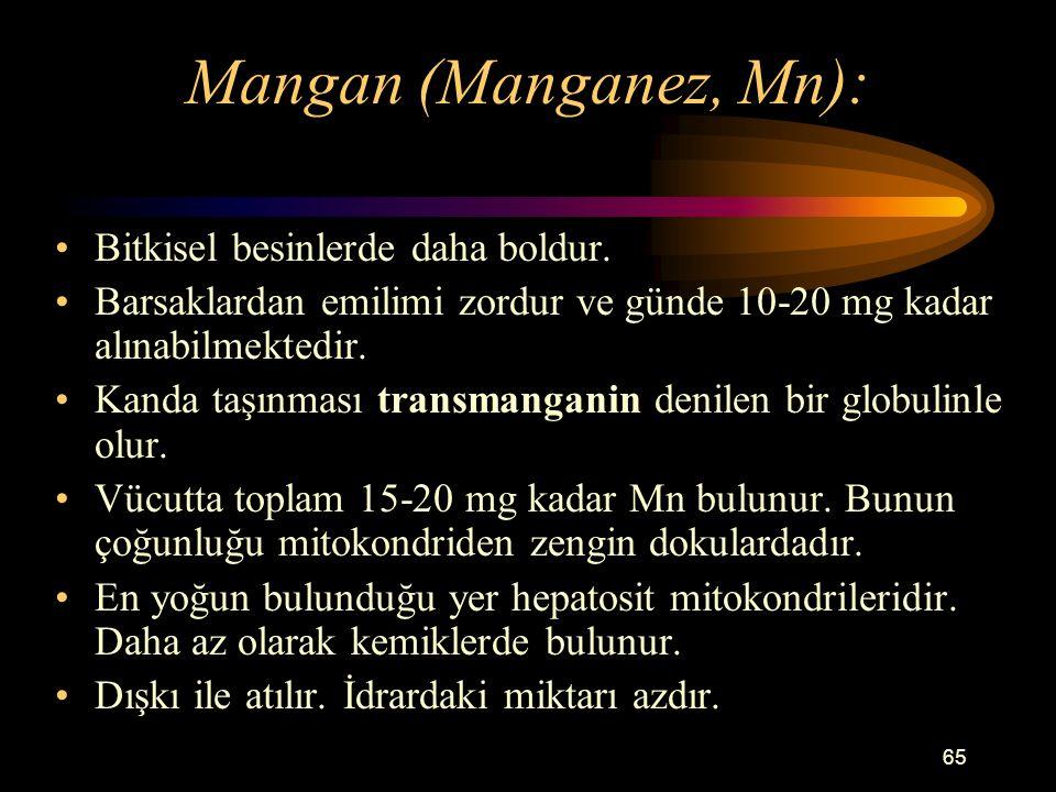 65 Mangan (Manganez, Mn): Bitkisel besinlerde daha boldur. Barsaklardan emilimi zordur ve günde 10-20 mg kadar alınabilmektedir. Kanda taşınması trans