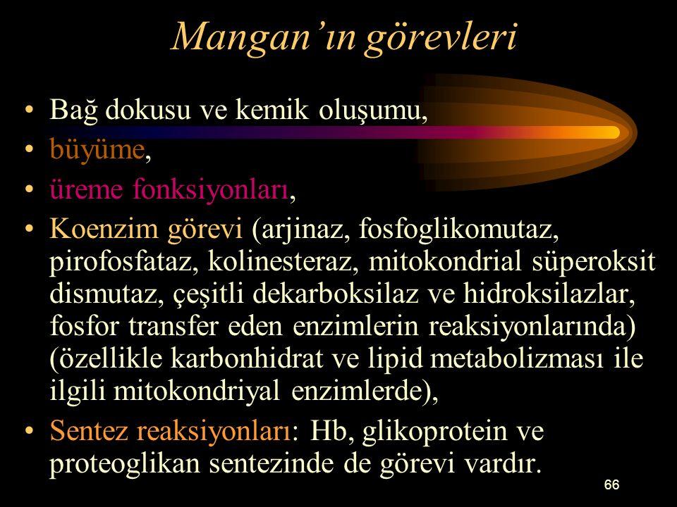 66 Mangan'ın görevleri Bağ dokusu ve kemik oluşumu, büyüme, üreme fonksiyonları, Koenzim görevi (arjinaz, fosfoglikomutaz, pirofosfataz, kolinesteraz,