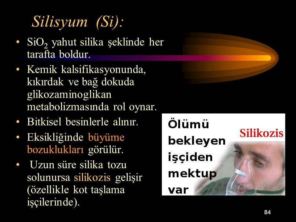 84 Silisyum (Si): SiO 2 yahut silika şeklinde her tarafta boldur. Kemik kalsifikasyonunda, kıkırdak ve bağ dokuda glikozaminoglikan metabolizmasında r