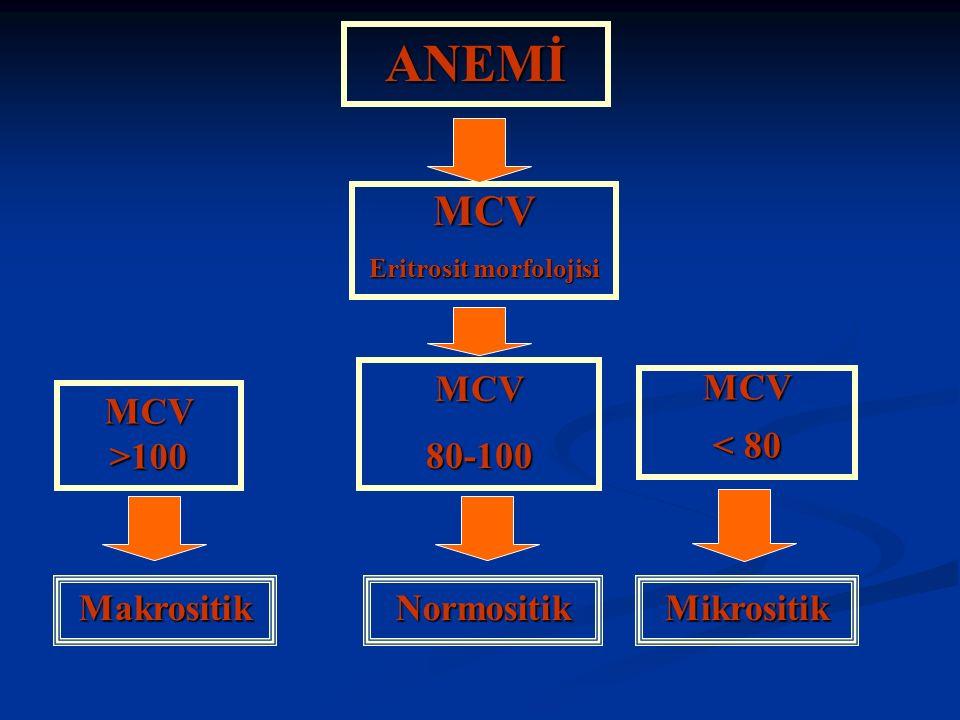 ANEMİ MCV Eritrosit morfolojisi MCV >100 MCV80-100 Makrositik MCV < 80 NormositikMikrositik