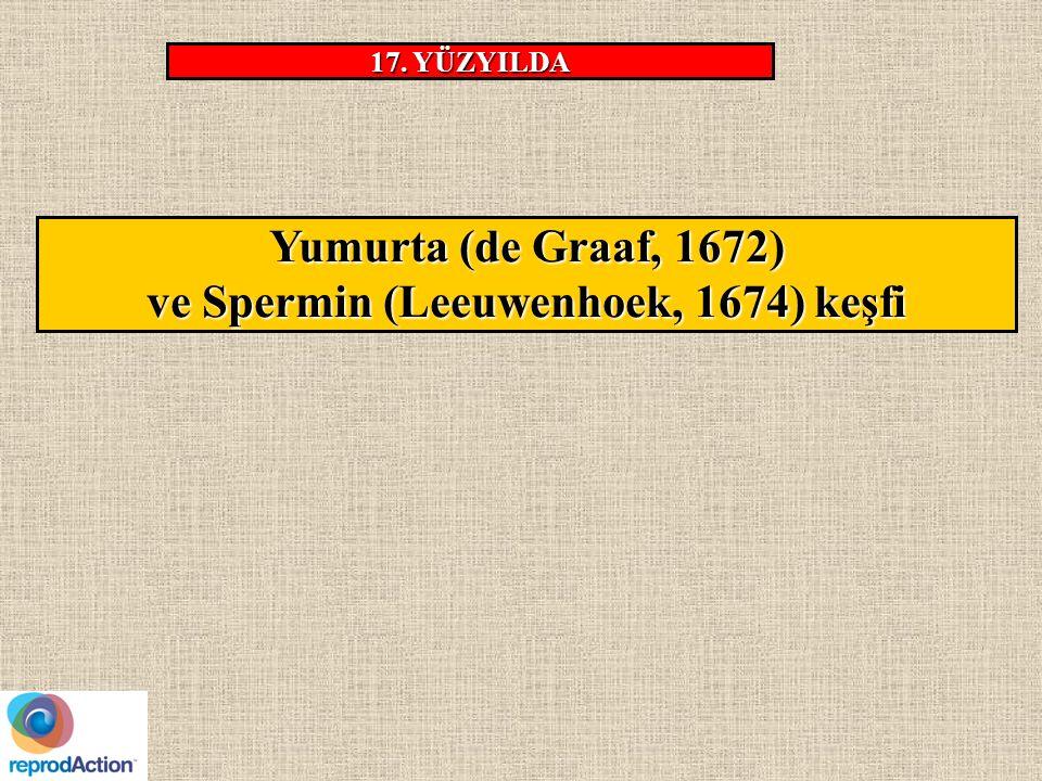 Yumurta (de Graaf, 1672) ve Spermin (Leeuwenhoek, 1674) keşfi 17. YÜZYILDA