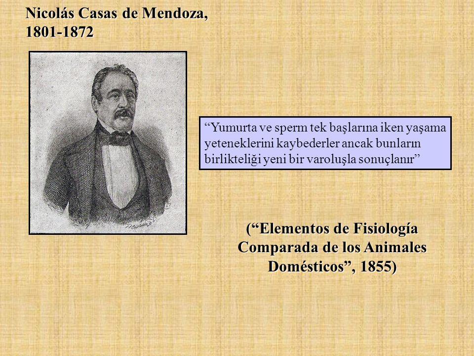 Nicolás Casas de Mendoza, 1801-1872 ( Elementos de Fisiología Comparada de los Animales Domésticos , 1855) Yumurta ve sperm tek başlarına iken yaşama yeteneklerini kaybederler ancak bunların birlikteliği yeni bir varoluşla sonuçlanır