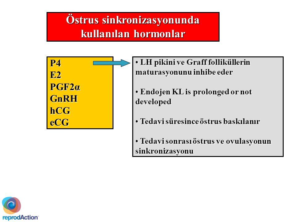 Östrus sinkronizasyonunda kullanılan hormonlar P4E2 PGF2α GnRHhCGeCG LH pikini ve Graff folliküllerin maturasyonunu inhibe eder LH pikini ve Graff folliküllerin maturasyonunu inhibe eder Endojen KL is prolonged or not developed Endojen KL is prolonged or not developed Tedavi süresince östrus baskılanır Tedavi süresince östrus baskılanır Tedavi sonrası östrus ve ovulasyonun sinkronizasyonu Tedavi sonrası östrus ve ovulasyonun sinkronizasyonu