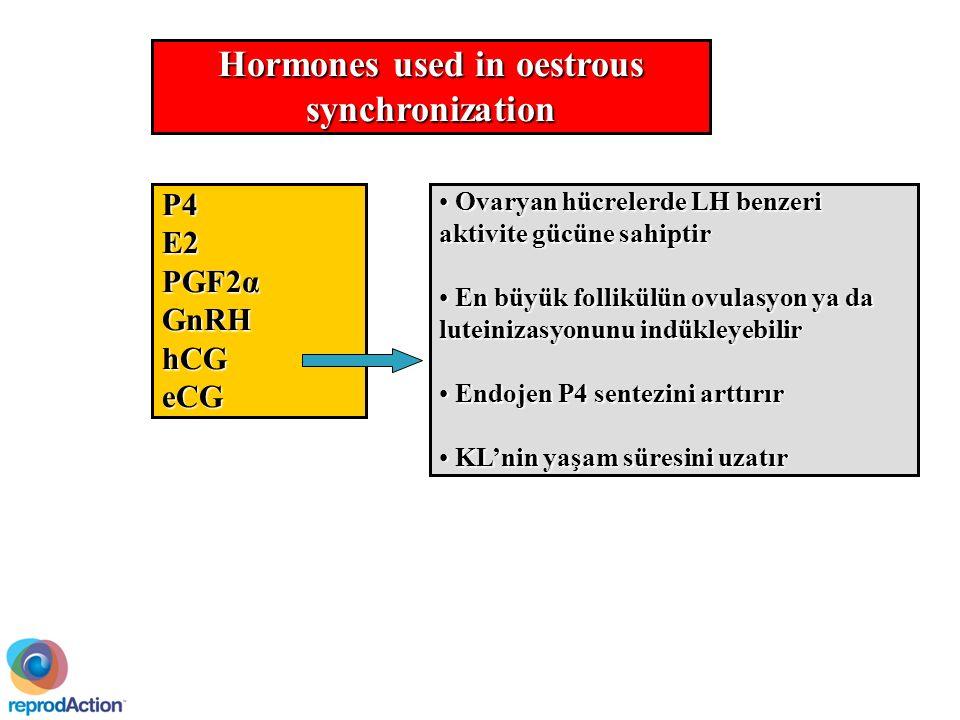 Hormones used in oestrous synchronization P4E2 PGF2α GnRHhCGeCG Ovaryan hücrelerde LH benzeri aktivite gücüne sahiptir Ovaryan hücrelerde LH benzeri aktivite gücüne sahiptir En büyük follikülün ovulasyon ya da luteinizasyonunu indükleyebilir En büyük follikülün ovulasyon ya da luteinizasyonunu indükleyebilir Endojen P4 sentezini arttırır Endojen P4 sentezini arttırır KL'nin yaşam süresini uzatır KL'nin yaşam süresini uzatır