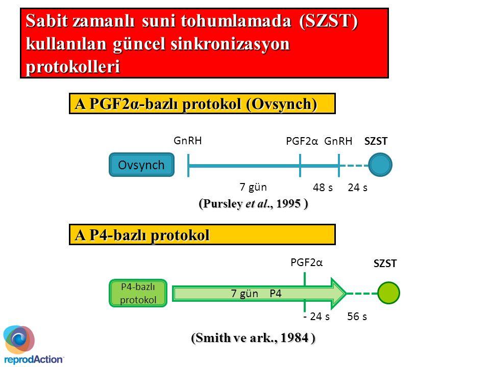 48 s 7 gün 24 s SZST GnRH PGF2α Ovsynch A PGF2α-bazlı protokol (Ovsynch) 7 gün P4 - 24 s PGF2α SZST P4-bazlı protokol 56 s A P4-bazlı protokol ( Pursley et al., 1995 ) (Smith ve ark., 1984) (Smith ve ark., 1984 ) Sabit zamanlı suni tohumlamada (SZST) kullanılan güncel sinkronizasyon protokolleri