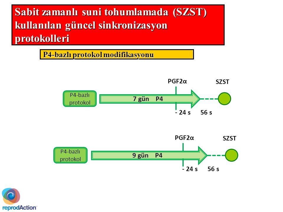 P4-bazlı protokol modifikasyonu 7 gün P4 - 24 s PGF2α SZST P4-bazlı protokol 56 s 9 gün P4 - 24 s PGF2α SZST P4-bazlı protokol 56 s Sabit zamanlı suni tohumlamada (SZST) kullanılan güncel sinkronizasyon protokolleri