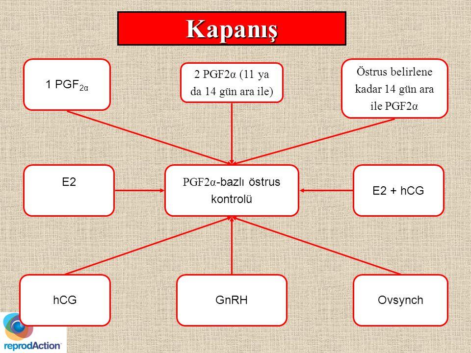 Kapanış PGF2α -bazlı östrus kontrolü 2 PGF2α (11 ya da 14 gün ara ile) hCGGnRH 1 PGF 2α Östrus belirlene kadar 14 gün ara ile PGF2α Ovsynch E2 + hCG E2