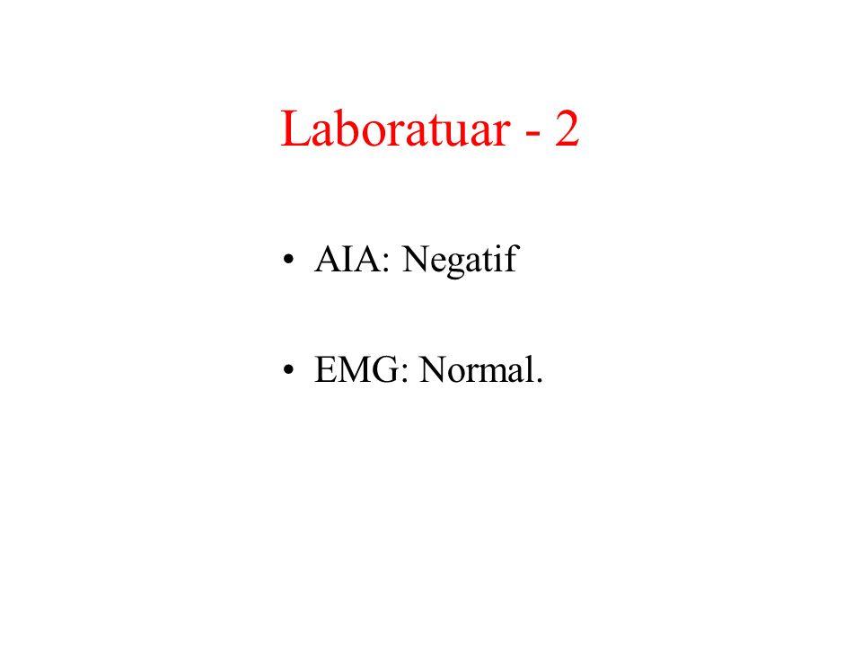Laboratuar - 2 AIA: Negatif EMG: Normal.