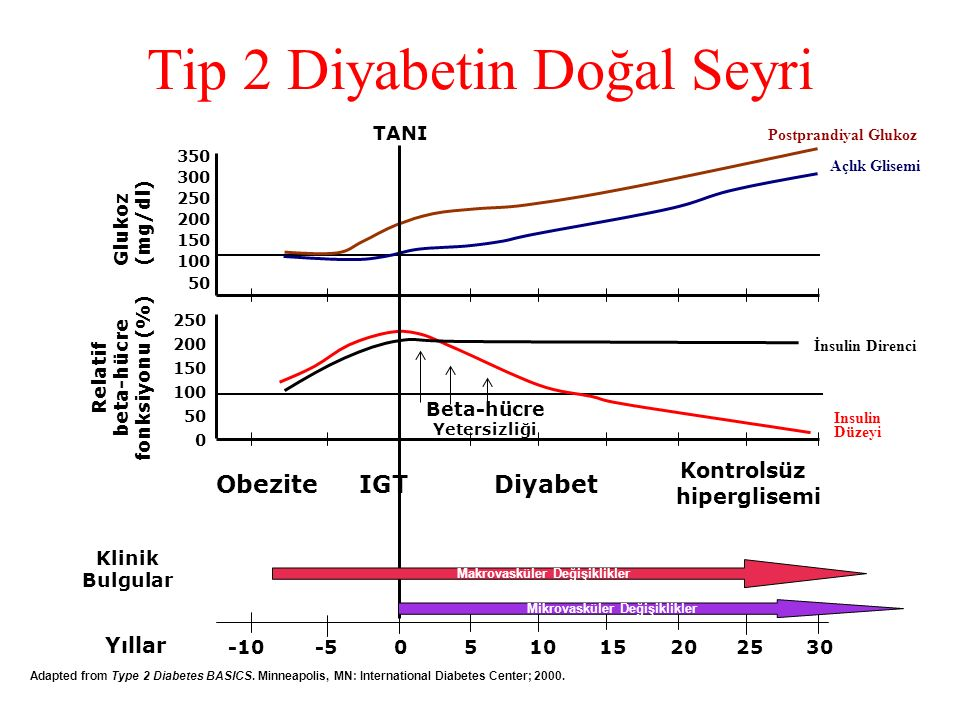 Tip 2 Diyabetin Doğal Seyri Yıllar -10 -5 0 5 10 15 20 25 30 350 300 250 200 150 100 50 Insulin Düzeyi İnsulin Direnci Beta-hücre Yetersizliği 250 200 150 100 50 0 Relatif beta-hücre fonksiyonu (%) Glukoz (mg/dl) TANI Klinik Bulgular Makrovasküler Değişiklikler Obezite IGT Diyabet Kontrolsüz hiperglisemi Mikrovasküler Değişiklikler Adapted from Type 2 Diabetes BASICS.