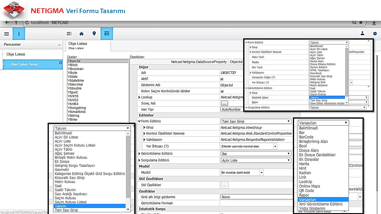 NETIGMA Veri Formu Tasarımı