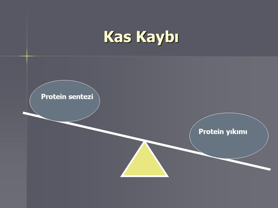 Protein sentezi Kas Kaybı Kas Kaybı Protein sentezi Protein yıkımı