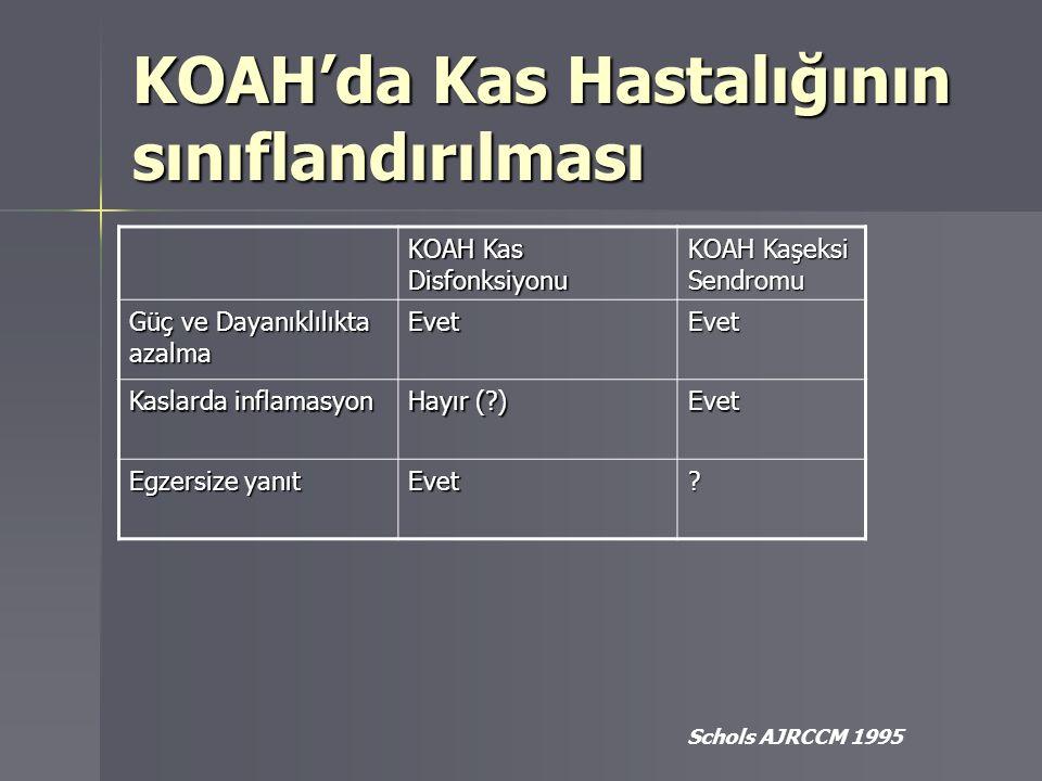 KOAH'da Kas Hastalığının sınıflandırılması Schols AJRCCM 1995 KOAH Kas Disfonksiyonu KOAH Kaşeksi Sendromu Güç ve Dayanıklılıkta azalma EvetEvet Kasla