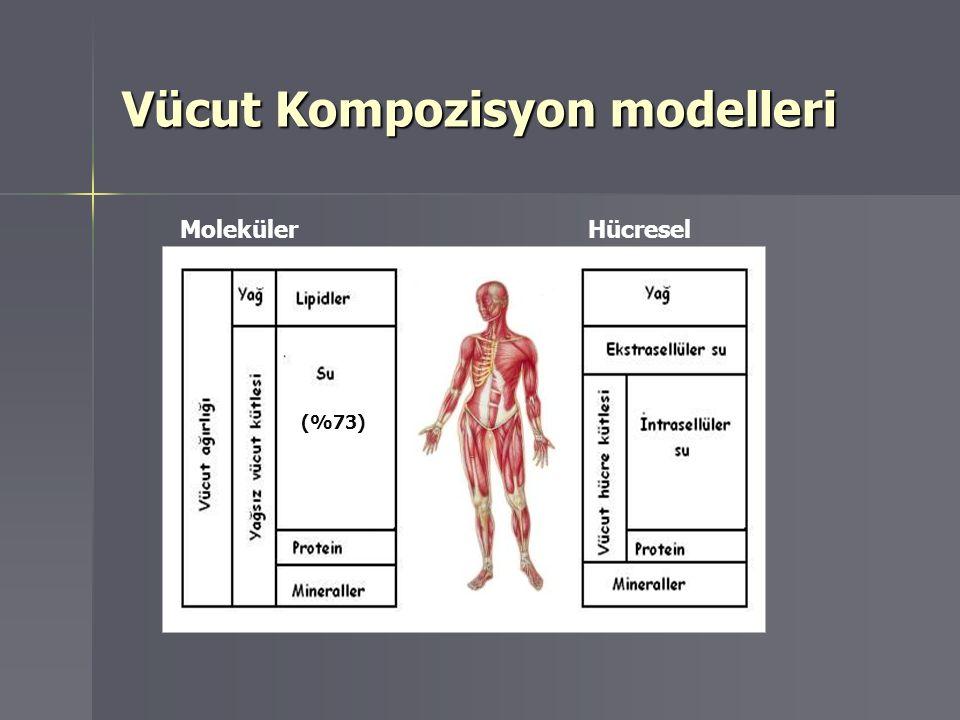 Vücut kompozisyonunun değerlendirilmesi Bölgesel MRI Dexa Tüm Vücut Dexa Deri kıvrım kalınlığı Biyoelektriksel impedans Kas, yağ dağılımı,YVK, YK, kemik kitlesi YVK, YK,kemik kitlesi, TVS