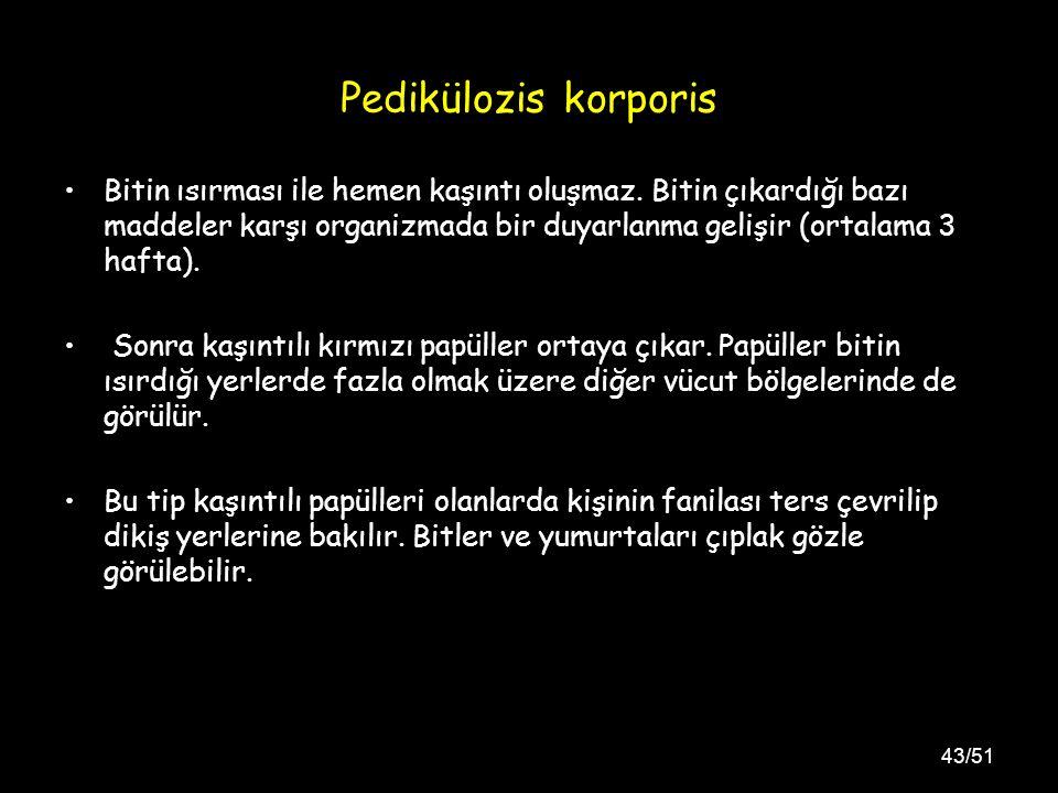 43/51 Pedikülozis korporis Bitin ısırması ile hemen kaşıntı oluşmaz.