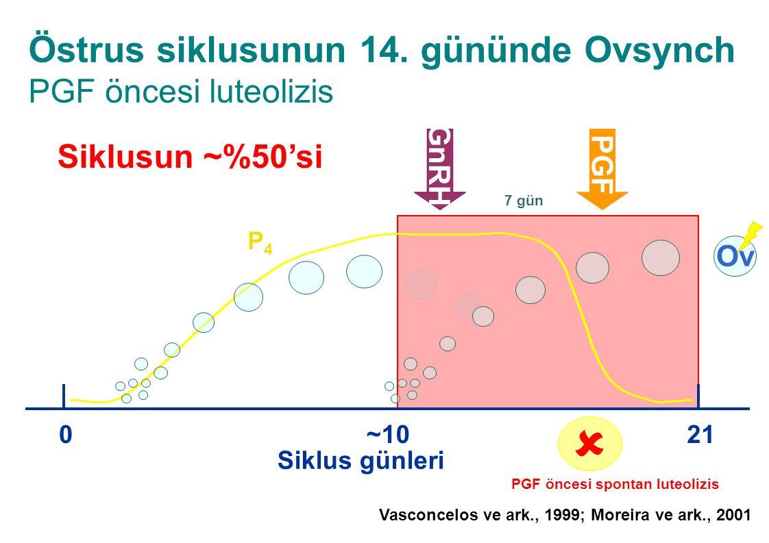 Östrus siklusunun 14. gününde Ovsynch PGF öncesi luteolizis Siklus günleri 021 Ov ~10 P4P4 GnRH PGF 7 gün  PGF öncesi spontan luteolizis Siklusun ~%5