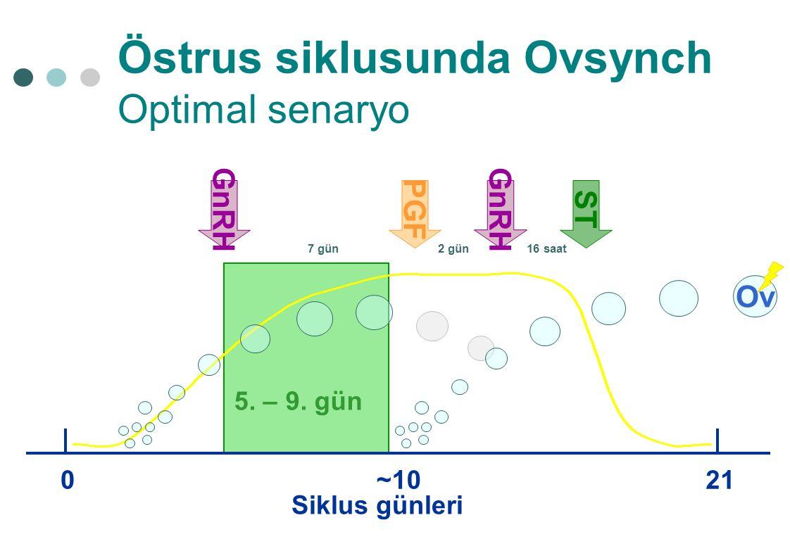 Östrus siklusunda Ovsynch Optimal senaryo Siklus günleri 021 Ov ~10 GnRH PGF 7 gün2 gün GnRH ST 16 saat 5. – 9. gün