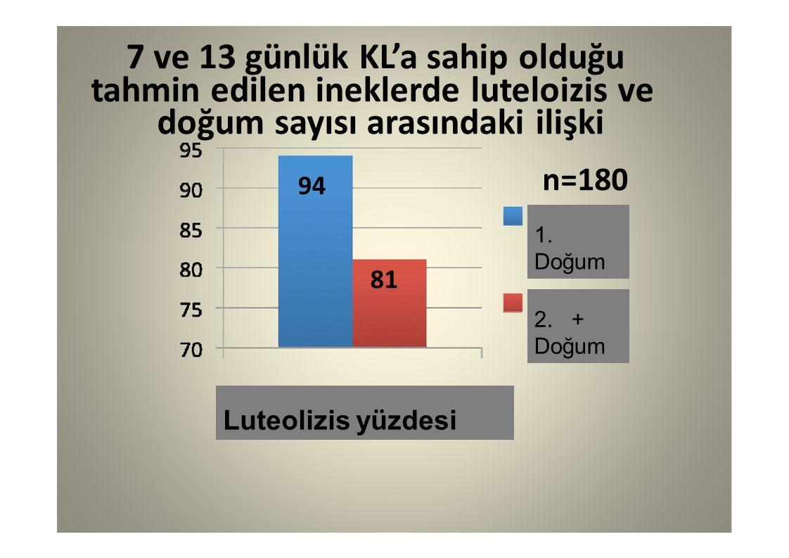 94 81 7 ve 13 günlük KL'a sahip olduğu tahmin edilen ineklerde luteloizis ve doğum sayısı arasındaki ilişki n=180 1. Doğum 2. + Doğum Luteolizis yüzde