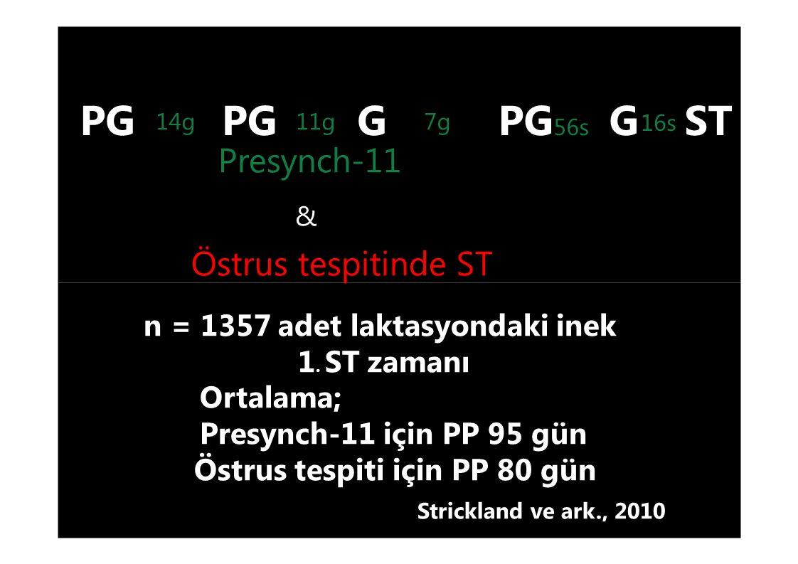 PG 56s G STPG G 16s 7g14g11g Presynch-11 & Östrus tespitinde ST n = 1357 adet laktasyondaki inek 1. ST zamanı Ortalama; Presynch-11 için PP 95 gün Öst