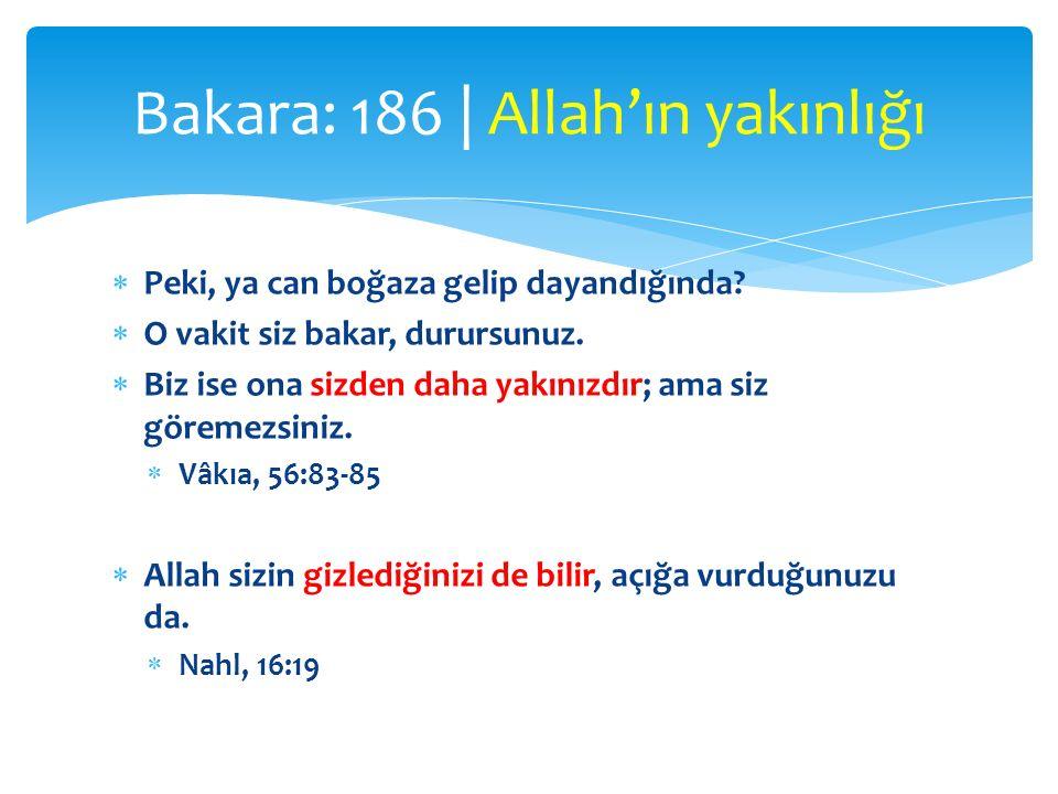  el-Karîb (Esmâ-i İlâhiyeden)  Semud kavmine de kardeşleri Salih'i gönderdik.