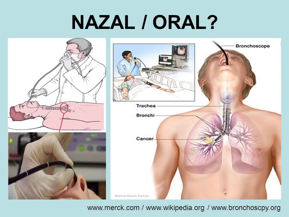 NAZAL / ORAL? www.merck.com / www.wikipedia.org / www.bronchoscpy.org