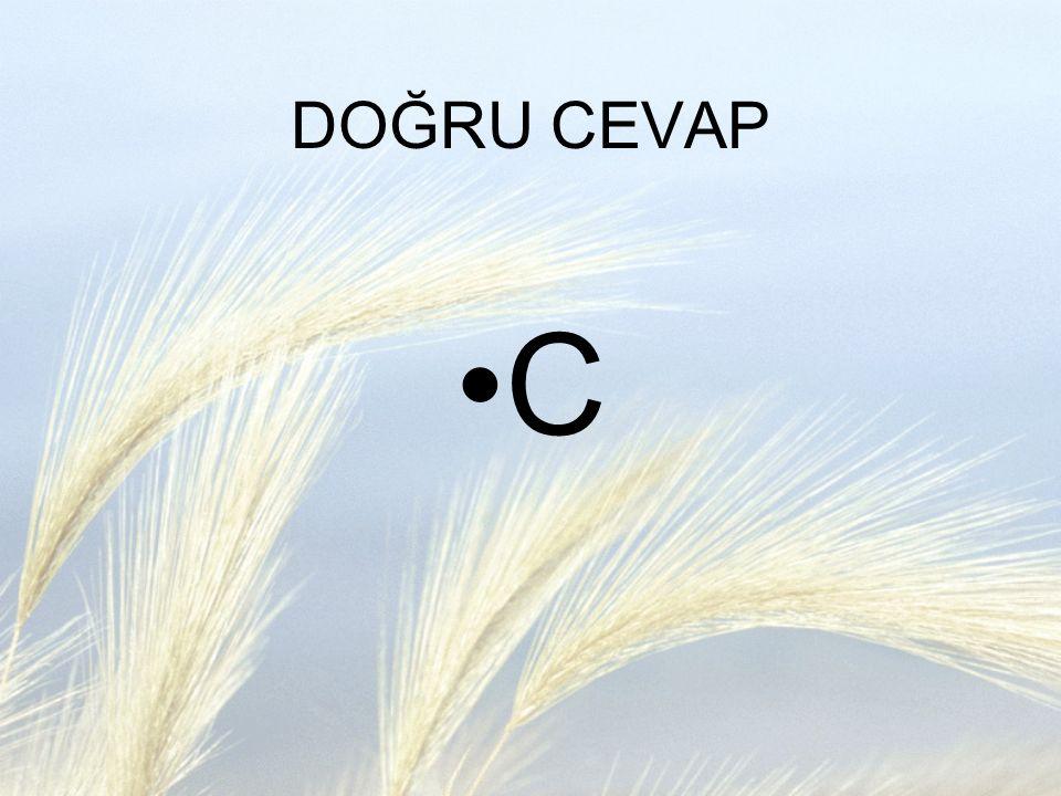 DOĞRU CEVAP C