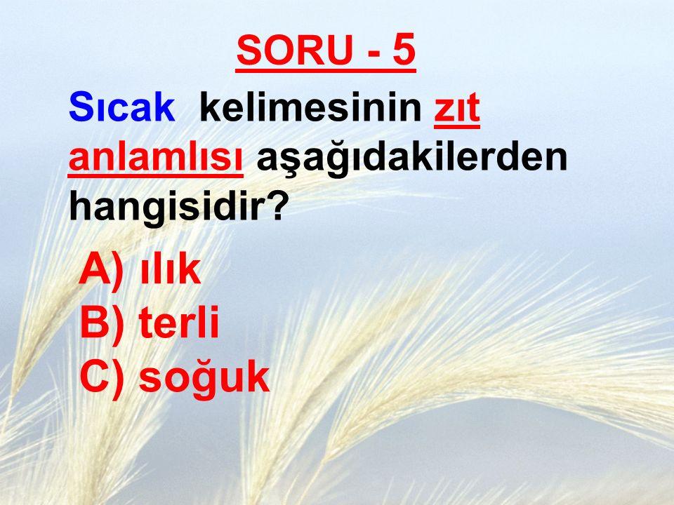 SORU - 5 Sıcak kelimesinin zıt anlamlısı aşağıdakilerden hangisidir? A) ılık B) terli C) soğuk