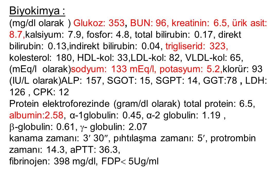 Biyokimya : (mg/dl olarak ) Glukoz: 353, BUN: 96, kreatinin: 6.5, ürik asit: 8.7,kalsiyum: 7.9, fosfor: 4.8, total bilirubin: 0.17, direkt bilirubin: 0.13,indirekt bilirubin: 0.04, trigliserid: 323, kolesterol: 180, HDL-kol: 33,LDL-kol: 82, VLDL-kol: 65, (mEq/l olarak)sodyum: 133 mEq/l, potasyum: 5.2,klorür: 93 (IU/L olarak)ALP: 157, SGOT: 15, SGPT: 14, GGT:78, LDH: 126, CPK: 12 Protein elektroforezinde (gram/dl olarak) total protein: 6.5, albumin:2.58, α-1globulin: 0.45, α-2 globulin: 1.19,  -globulin: 0.61,  - globulin: 2.07 kanama zamanı: 3 30 , pıhtılaşma zamanı: 5, protrombin zamanı: 14.3, aPTT: 36.3, fibrinojen: 398 mg/dl, FDP  5Ug/ml