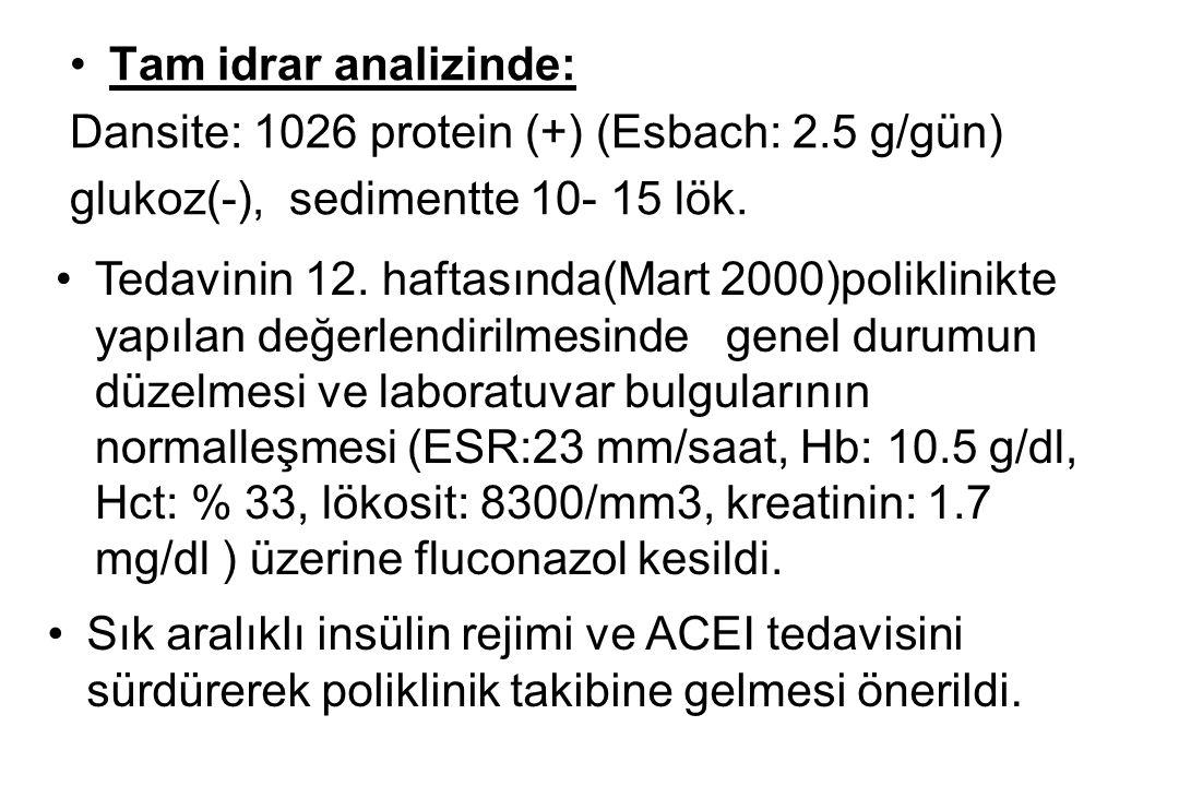 Tam idrar analizinde: Dansite: 1026 protein (+) (Esbach: 2.5 g/gün) glukoz(-), sedimentte 10- 15 lök.