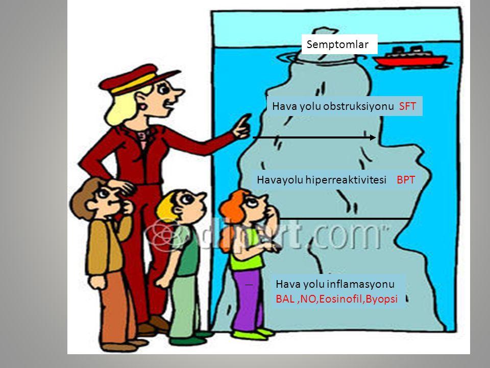 Hava yolu inflamasyonu BAL,NO,Eosinofil,Byopsi Havayolu hiperreaktivitesi BPT Hava yolu obstruksiyonu SFT Semptomlar