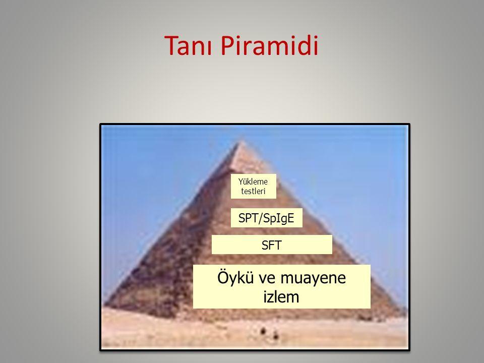 Tanı Piramidi Öykü ve muayene izlem SFT SPT/SpIgE Yükleme testleri