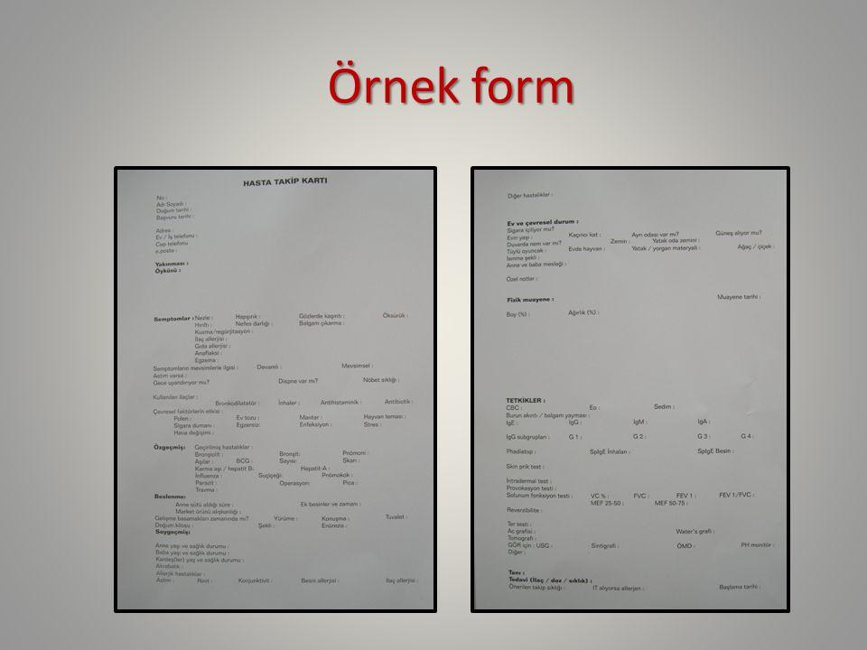 Örnek form