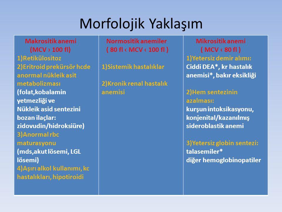 Morfolojik Yaklaşım Makrositik anemi (MCV › 100 fl) 1)Retikülositoz 2)Eritroid prekürsör hcde anormal nükleik asit metabolizması (folat,kobalamin yetmezliği ve Nükleik asid sentezini bozan ilaçlar: zidovudin/hidroksiüre) 3)Anormal rbc maturasyonu (mds,akut lösemi, LGL lösemi) 4)Aşırı alkol kullanımı, kc hastalıkları, hipotiroidi Normositik anemiler ( 80 fl ‹ MCV ‹ 100 fl ) 1)Sistemik hastalıklar 2)Kronik renal hastalık anemisi Mikrositik anemi ( MCV ‹ 80 fl ) 1)Yetersiz demir alımı: Ciddi DEA*, kr hastalık anemisi*, bakır eksikliği 2)Hem sentezinin azalması: kurşun intoksikasyonu, konjenital/kazanılmış sideroblastik anemi 3)Yetersiz globin sentezi: talasemiler* diğer hemoglobinopatiler