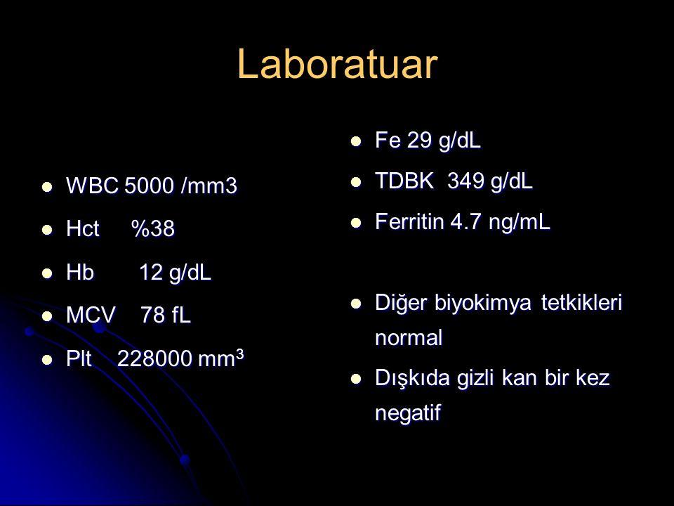 Laboratuar WBC 5000 /mm3 WBC 5000 /mm3 Hct %38 Hct %38 Hb 12 g/dL Hb 12 g/dL MCV 78 fL MCV 78 fL Plt 228000 mm 3 Plt 228000 mm 3 Fe 29 g/dL Fe 29 g/dL