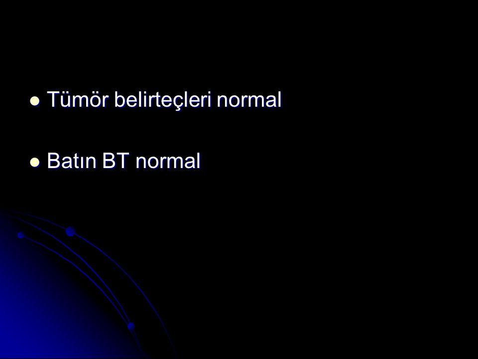 Tümör belirteçleri normal Tümör belirteçleri normal Batın BT normal Batın BT normal