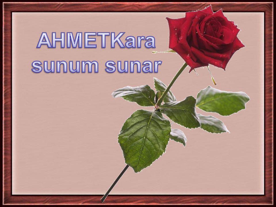 Hz Muhammed gençlik yıllarında 'Hilfu-l fudul' ( Erdemliler yemini) isimli gruba dahil olmuştur.