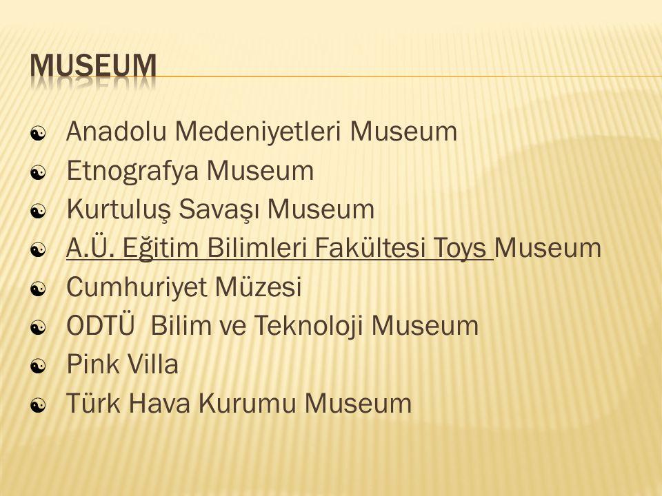  Anadolu Medeniyetleri Museum  Etnografya Museum  Kurtuluş Savaşı Museum  A.Ü. Eğitim Bilimleri Fakültesi Toys Museum  Cumhuriyet Müzesi  ODTÜ B