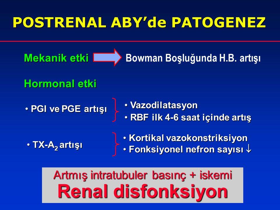 1. Üreter obstrüksiyonu 2. Mesane boynu obstrüksiyonu 3. Üretra obstrüksiyonu POSTRENAL ABY'de ETYOLOJİ