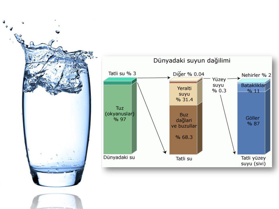 Su kirliliği antropojin etkiler sonucunda ortaya çıkan, kullanımı kısıtlayan veya engelleyen ve ekonomik dengeleri bozan kalite değişimleridir.