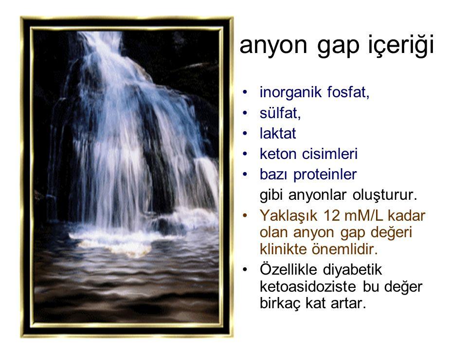 anyon gap içeriği inorganik fosfat, sülfat, laktat keton cisimleri bazı proteinler gibi anyonlar oluşturur. Yaklaşık 12 mM/L kadar olan anyon gap değe