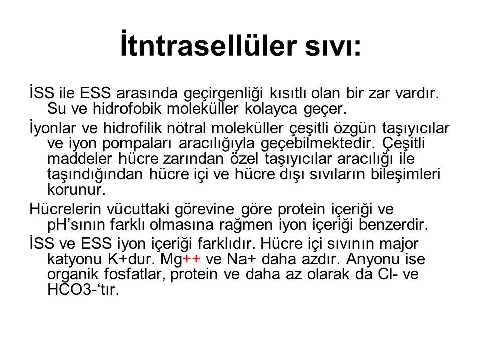 İtntrasellüler sıvı: İSS ile ESS arasında geçirgenliği kısıtlı olan bir zar vardır. Su ve hidrofobik moleküller kolayca geçer. İyonlar ve hidrofilik n