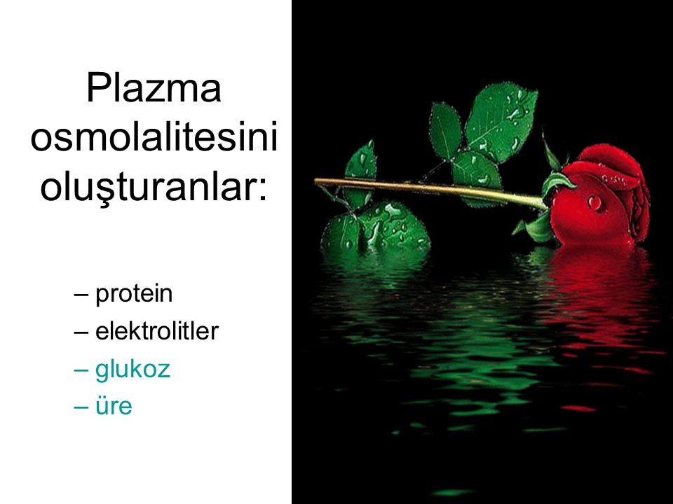 Plazma osmolalitesini oluşturanlar: –protein –elektrolitler –glukoz –üre