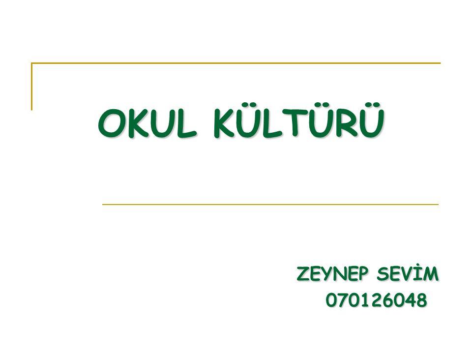 OKUL KÜLTÜRÜNÜN BOYUTLARI 3.