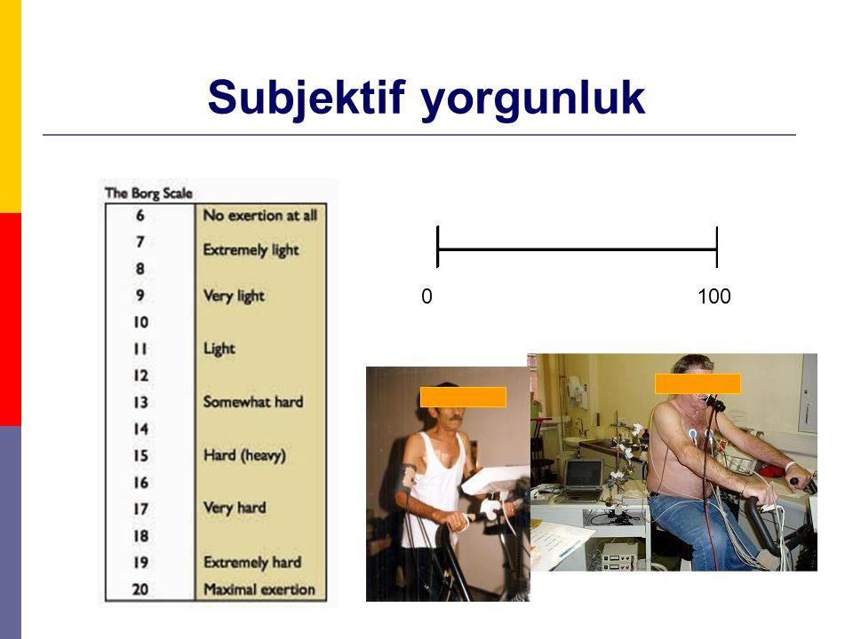 Subjektif yorgunluk 0100
