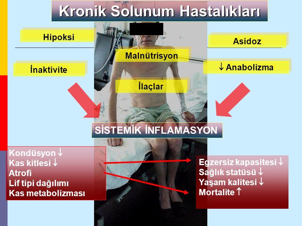 Kondüsyon  Kas kitlesi  Atrofi Lif tipi dağılımı Kas metabolizması Malnütrisyon İnaktivite İlaçlar Asidoz SİSTEMİK İNFLAMASYON Kronik Solunum Hastal